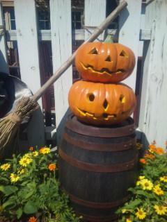 かぼちゃ村